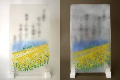 No.060 菜の花畑