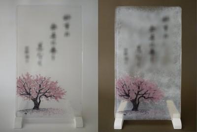 No.077 桜