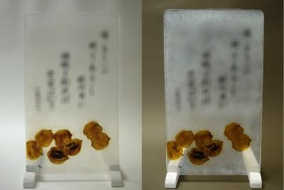 No.102 胡桃
