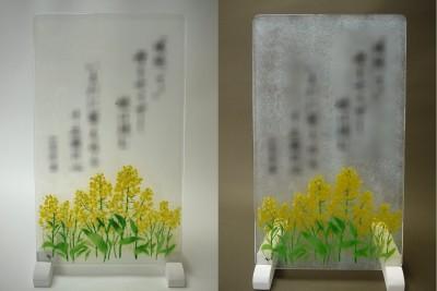 No.111 菜の花