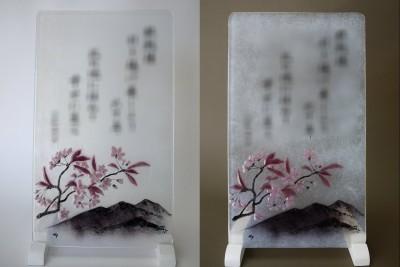 No.128 山桜と山