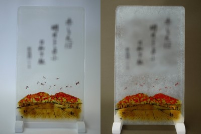 No.132 紅葉と赤とんぼ