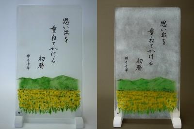 No.133 菜の花畑