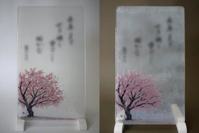 No.149 桜