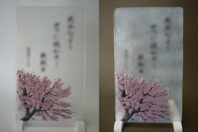 No.155 桜
