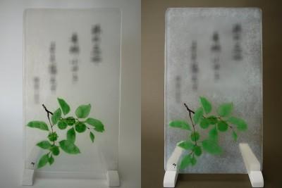 No.157 青柿
