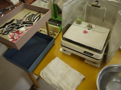 ルーターと洗浄用の水(右下)、そしてタオルなど