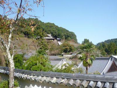 長谷寺本坊から見上げた本堂