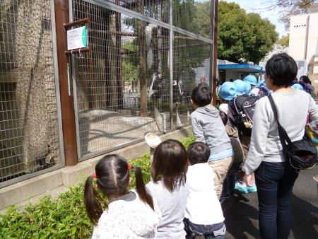 最近、図書館で借りた動物図鑑でサルの生態を見ていたせいか?・・サルにも興味がありました。長女は写真を沢山撮っていました。