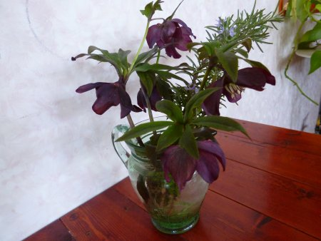黒のような紫のような・・シックな色も綺麗です。