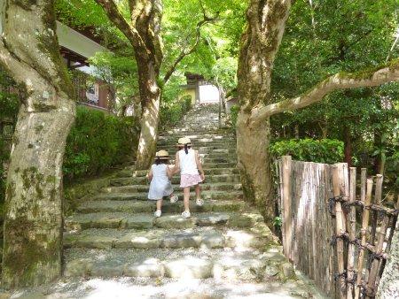 こちらは、京都大原の寂光院。歴史に弱い私がウィキペディアの力をお借りし説明しますと・・平清盛の娘、建礼門院が平家滅亡後、隠棲した所だそうです。