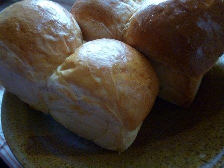 ここ数日、作り続けている食パン。購入した本を参考に、せっせと作っています。