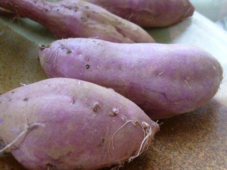 今年のサツマイモは、大きすぎでもなく、小さすぎでもなく・・ちょうどいい大きさです。