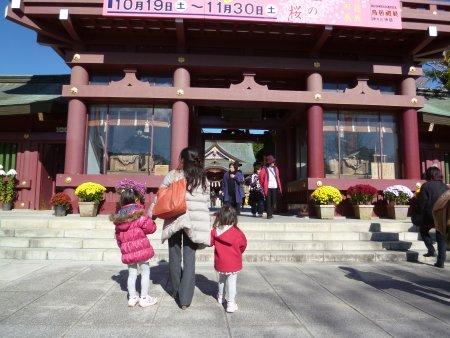 笠間市に行きました。偶然にも出かけた日が、笠間の菊祭り期間中。笠間稲荷神社内では、沢山の菊と、出店が沢山ありました。佃煮、干し芋、焼き栗などなど・・秋は食欲が増しますね・・。